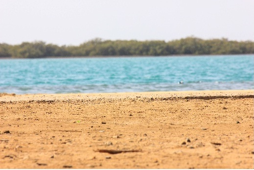 A Weekend Getaway to Thuwal Beach | Jeddah Blog
