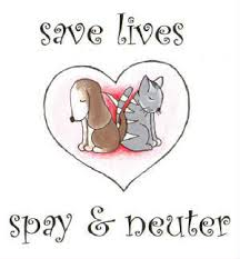 save lives. spay and neuter.